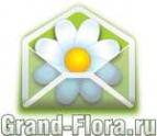 Логотип компании Доставка цветов Гранд Флора (ф-л г.Колпино)